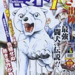 【懐かしの漫画】大人買いして読んだ白い戦士ヤマト