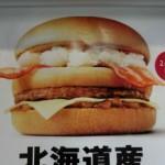 美味いんだけどポテト強すぎ マクドナルドの名前募集バーガー