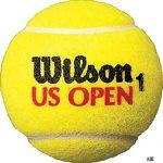 2016年USオープン、準決勝で錦織圭ワウリンカに敗退