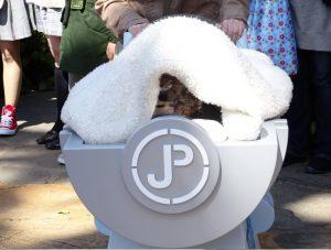 USJ_ダイナソー