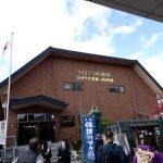 京都嵐山の嵯峨野トロッコ列車で紅葉狩り