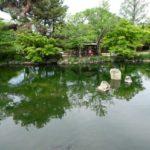 京都市円山公園のスッポン