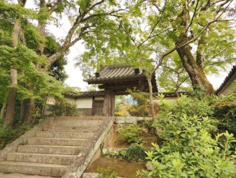 ED 12-200mm+神社
