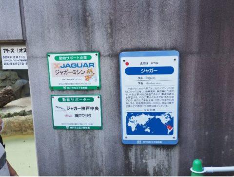 ジャガーミシン,王子動物園