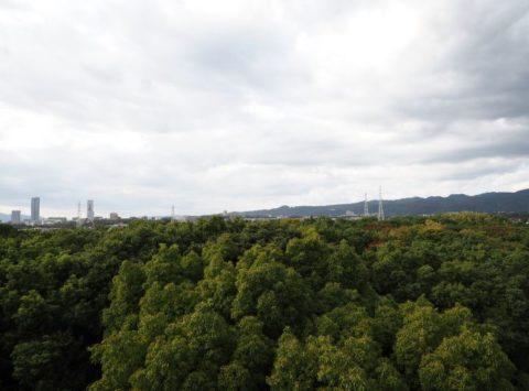 ソラードの展望台タワーの眺望