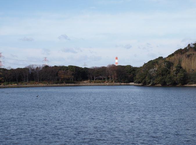 山田池公園の池