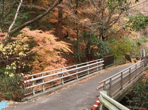 摂津峡散策ルート